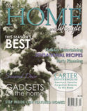 Michigan Home - cover formated